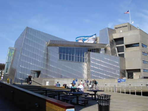 The New England Aquarium Boston Massachusetts Large