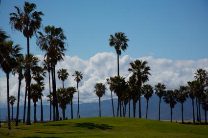 Venice Beach California Building Codes