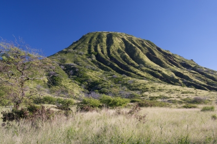 The Koko Crater Botanical Garden Covers Sixty Acres Within The Inner Slopes  And Basin Of A Huge Volcanic Crater Near Hanauma Bay On The East Side Of  Oahu ...