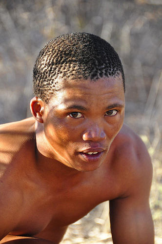 The Khoisan Tribes Of Southern Africa Carry Eurasian Dna