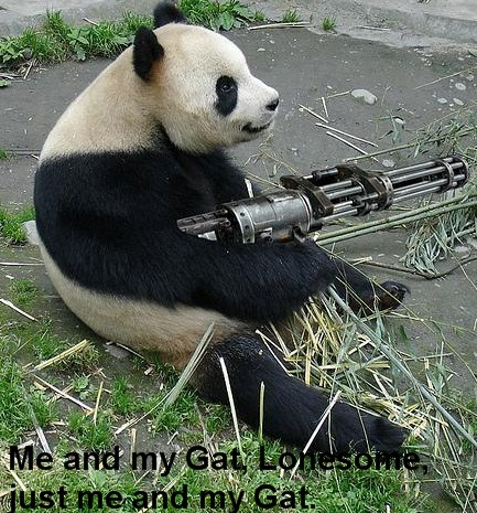 Away for some time 26546d1220321473-gettin-lost-woods-camping-2-weeks-pandas-need-guns1