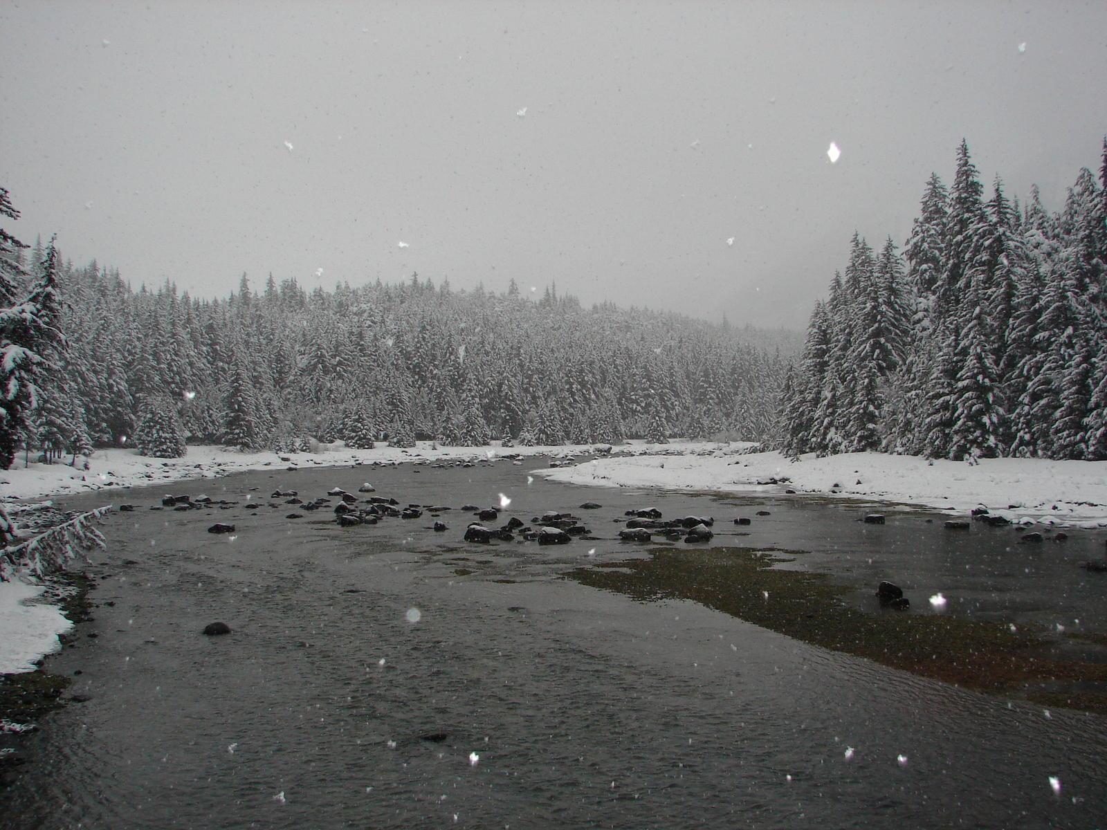Alaska haines county -  Haines Alaska Spring Snowfall Jpg