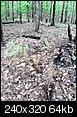Exploring Arkansas-brushyblaylock-cemetery.jpg
