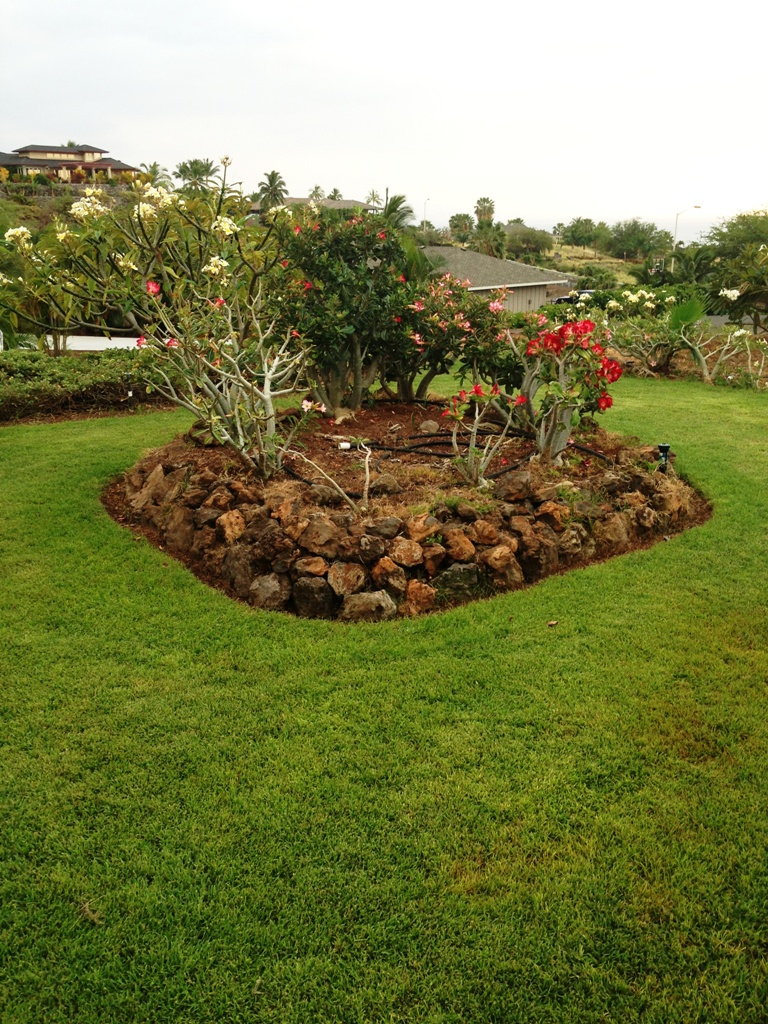 Magnificent Weather Garden Grove 92841 Inspiration - Beautiful ...