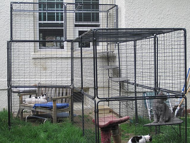 Indoor Cat Barrier for Keeping Cats Separated during the day ...