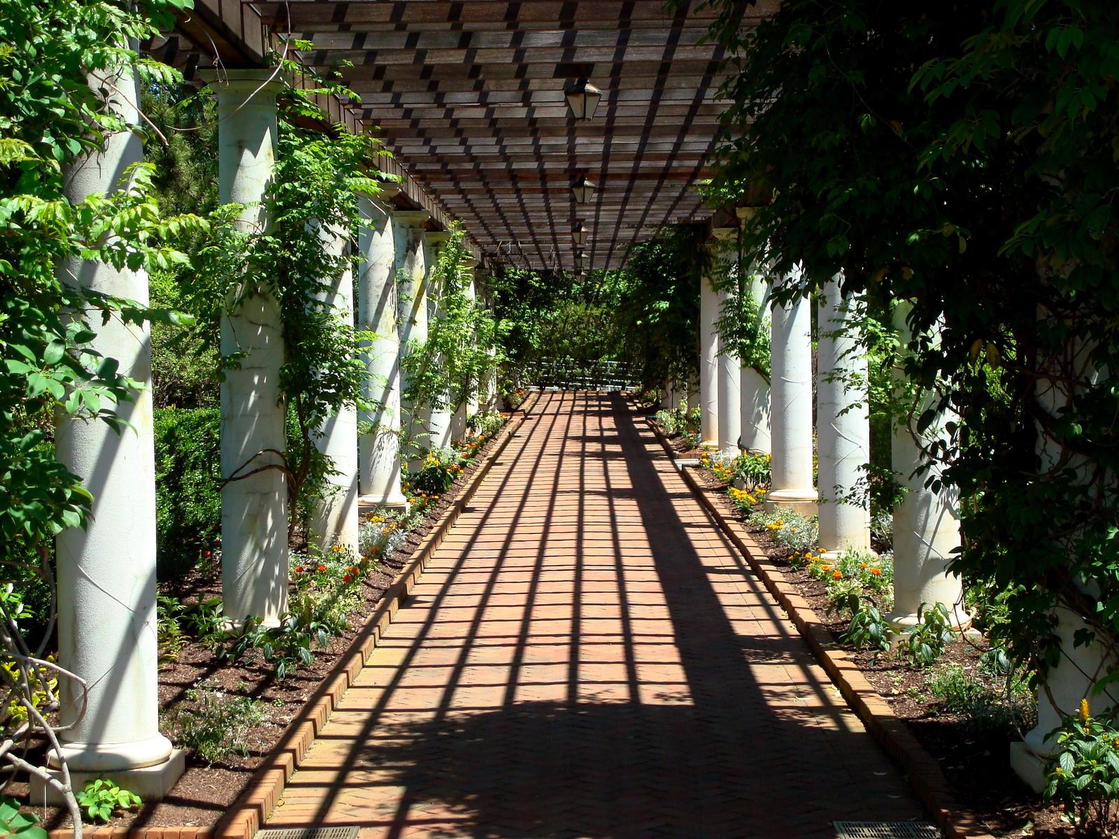 Charlotte Botanical Gardens