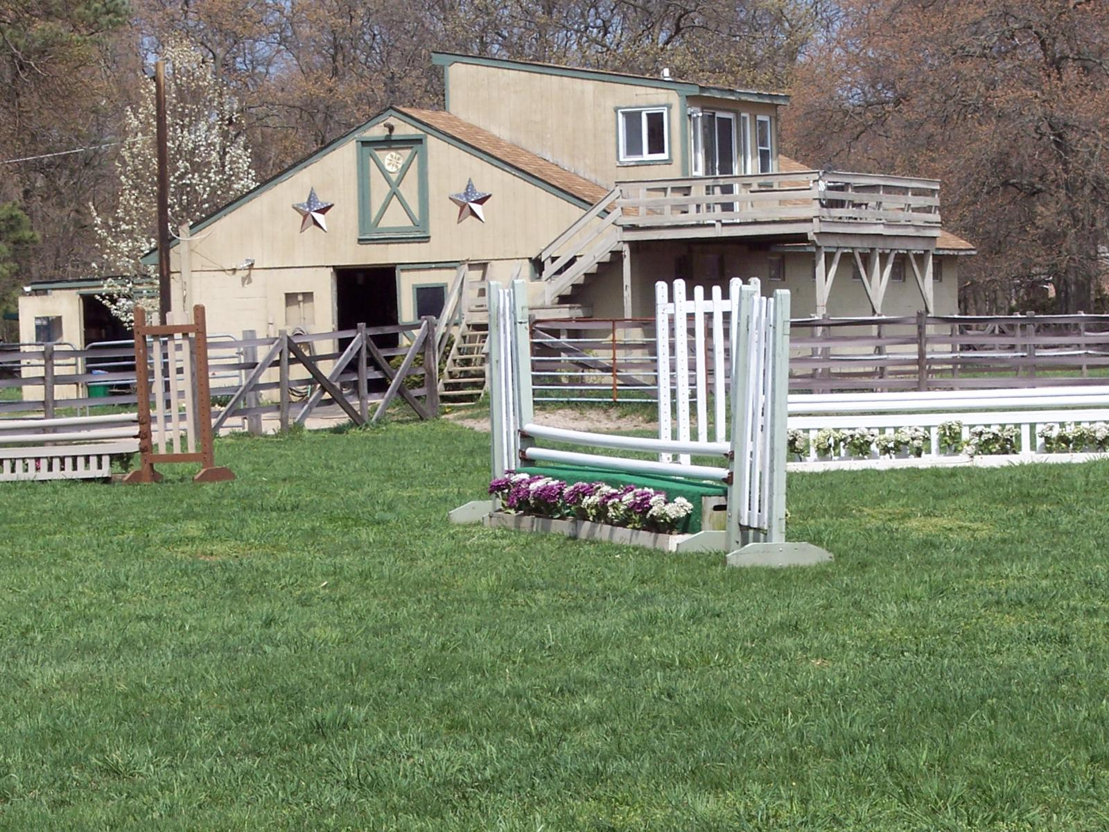 Horses For Sale Long Island Ny