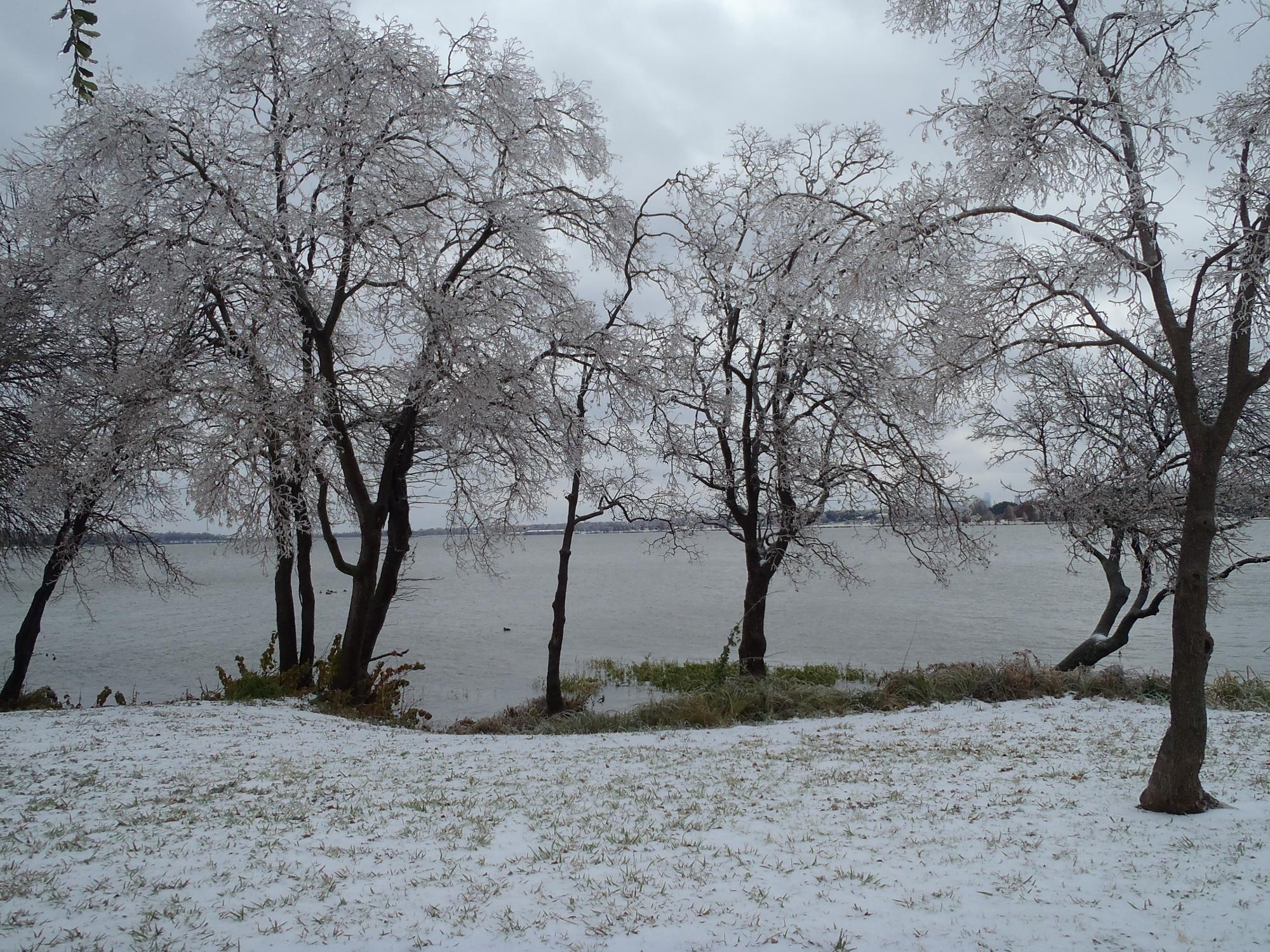 Winter Ice Storm Events - December, 2013 - DFW Area (Wellington: car
