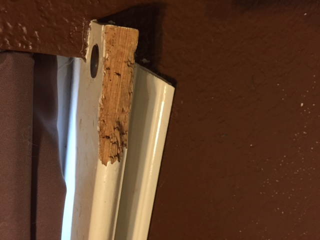 Have a small job for a carpenter, dog chewed window ledge