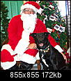 Pet Picture gallery-shadow-santa-2.jpg