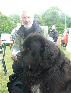 english mastiffs and newfoundland owners-large_dog_230x300.jpg