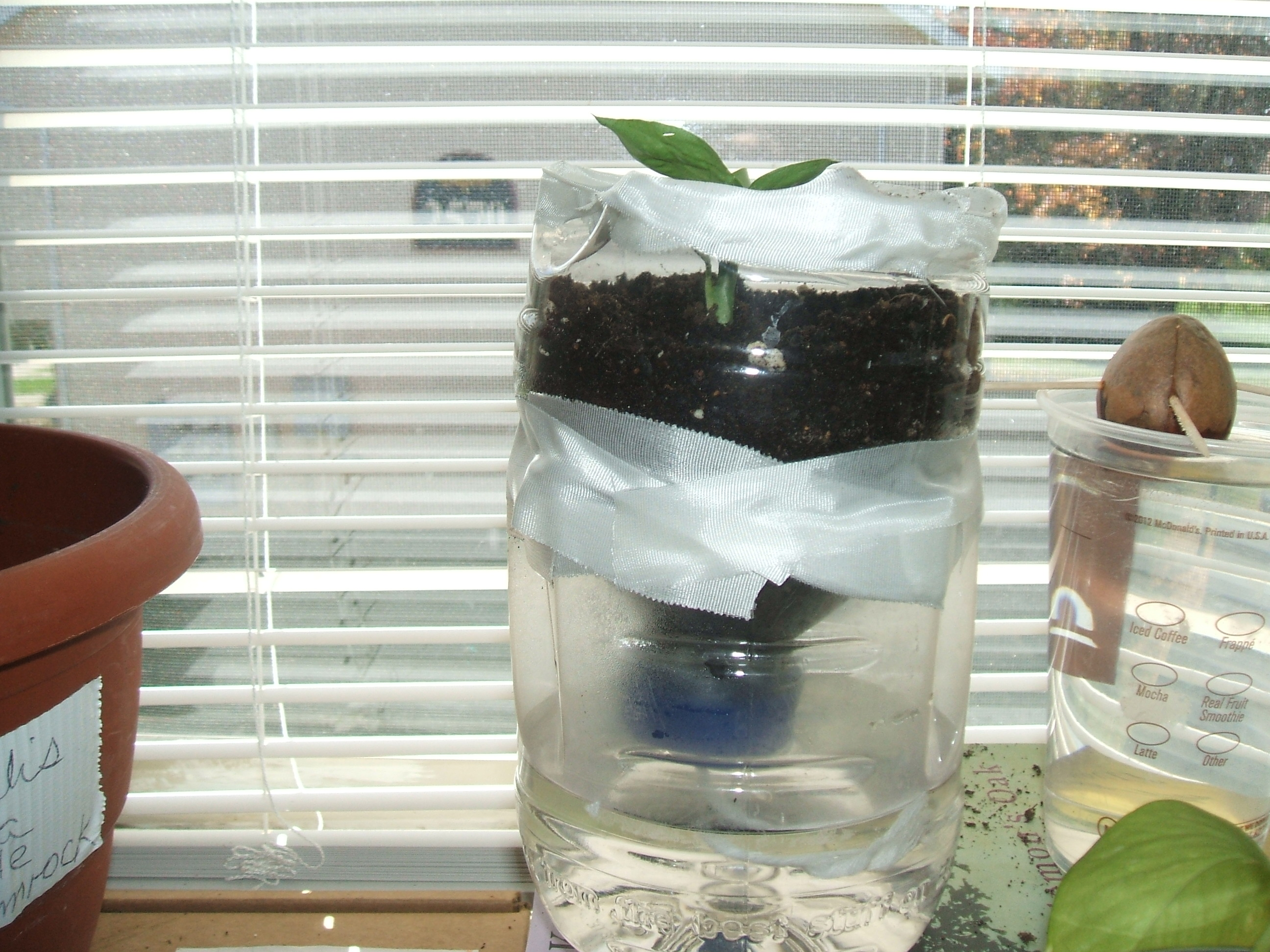 I built a self waterer plant in less than 25 mins last night-candle-