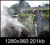 Hot Compost-turningthecompost1.jpg