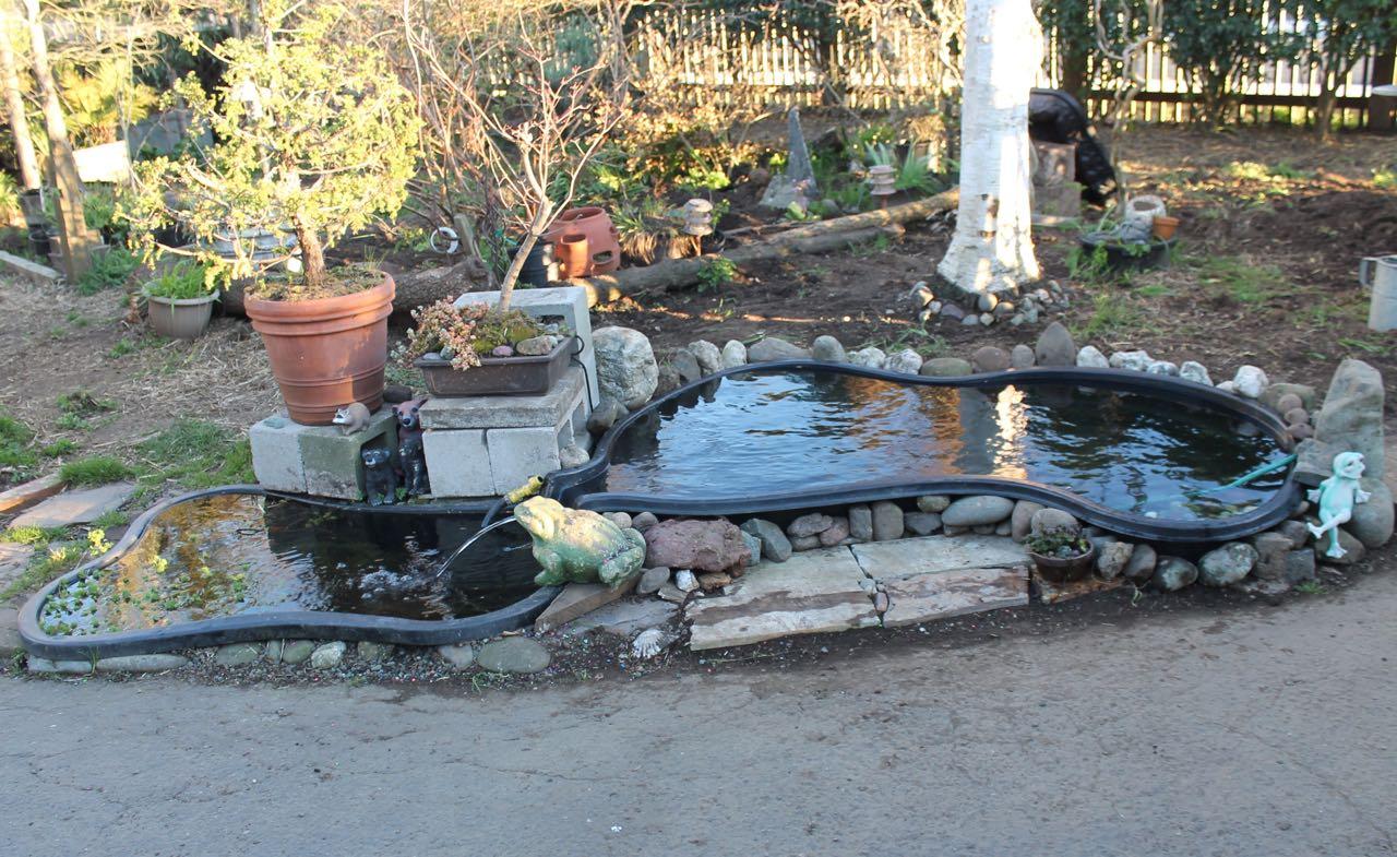 Preformed garden ponds grow solar front yard south for Preformed fish ponds