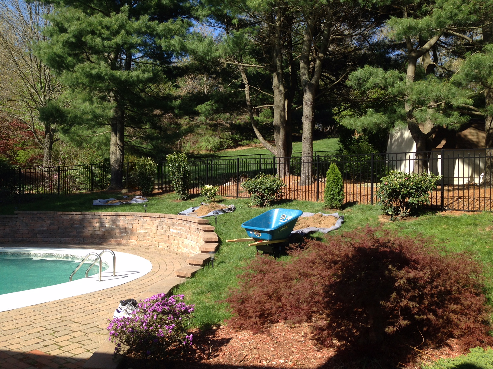 Landscaping Ideas Looking For Shrub Privacy Fence Img 0736 Jpg