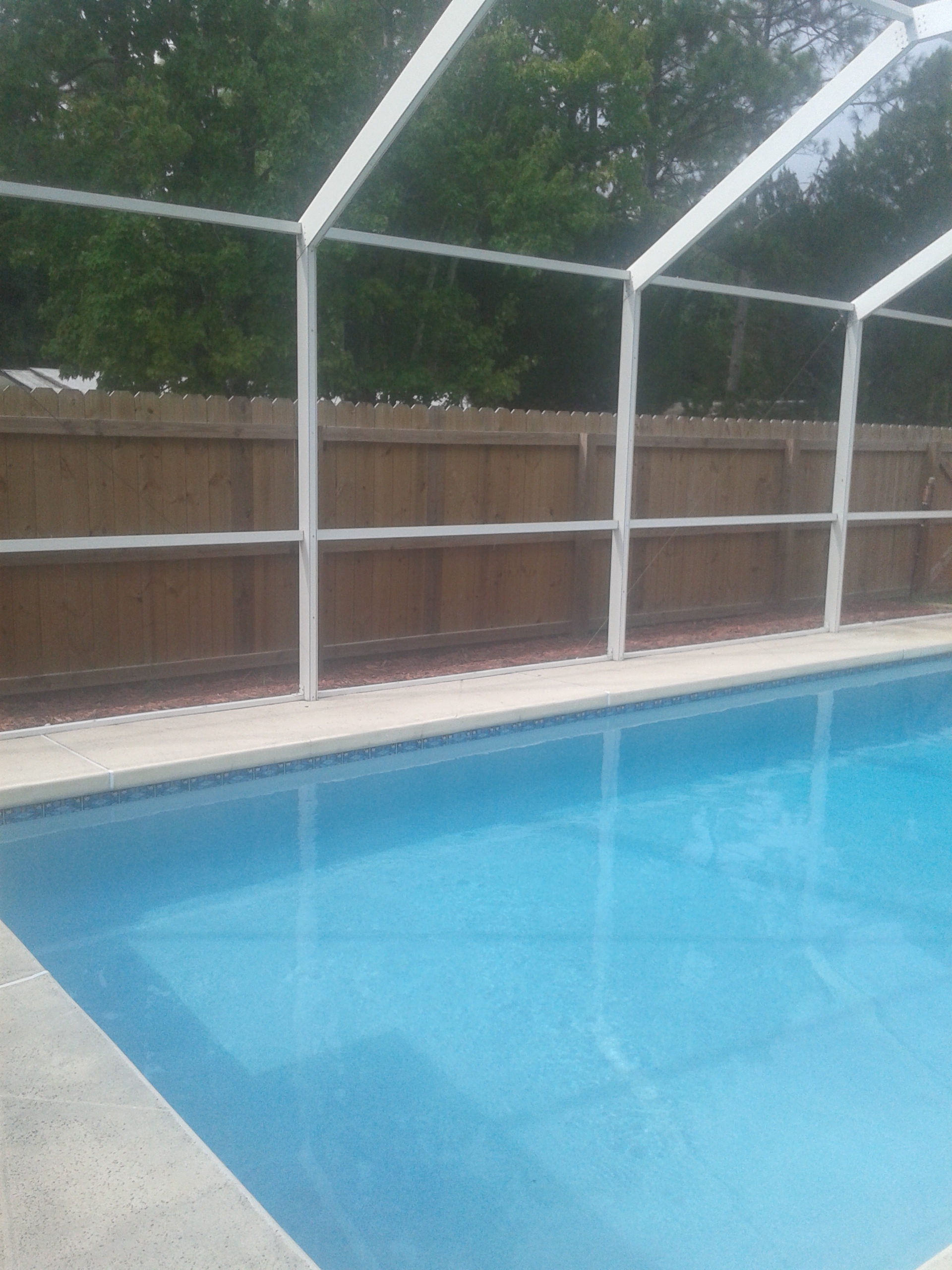 Need advice on tropical pool landscaping in florida lawn for Garden city pool 2015