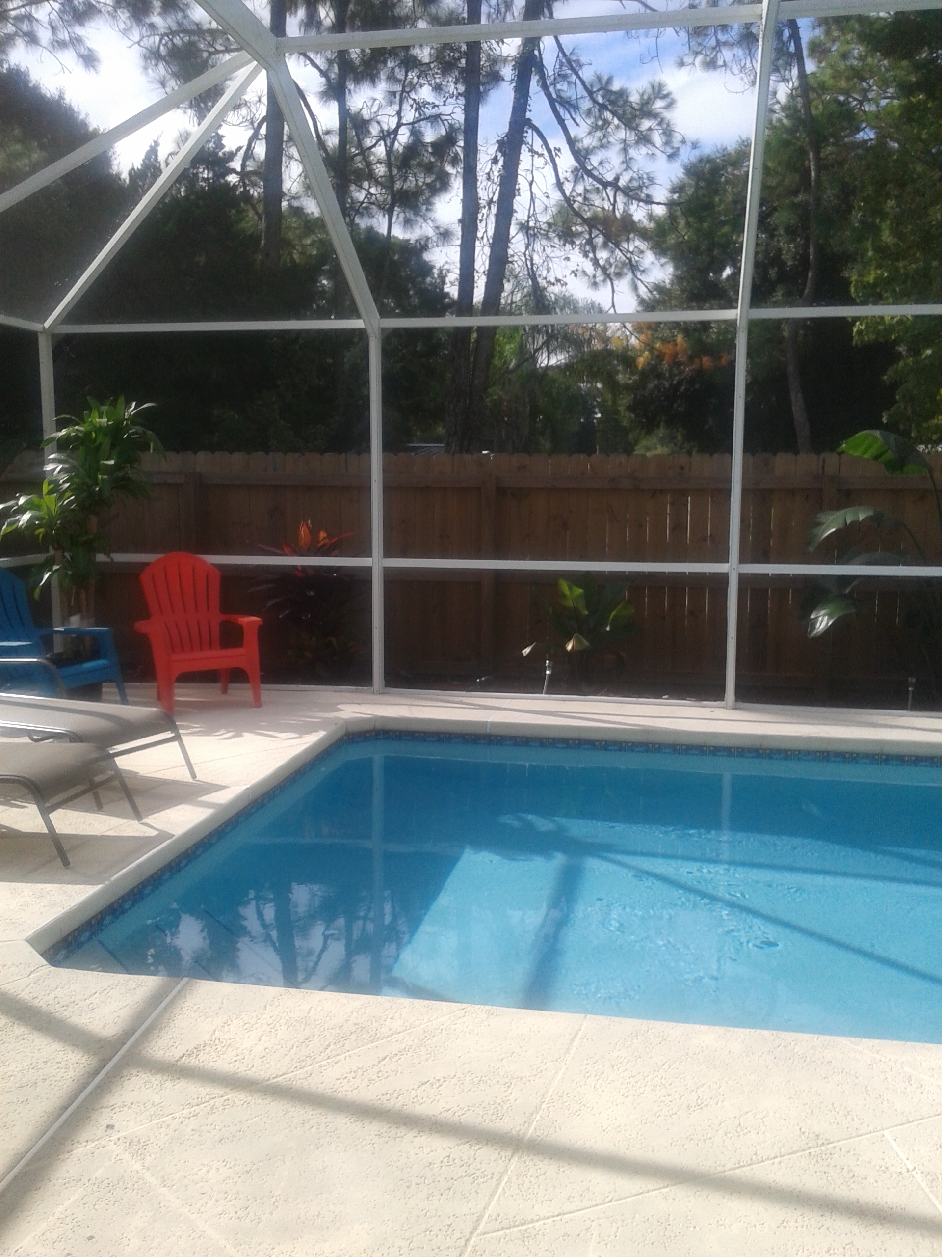 Need advice on tropical pool landscaping in florida for Garden city pool 2015
