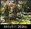 Small tree stump removal ideas-img_0062.jpg