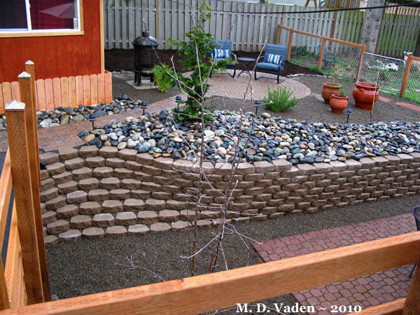 Backyard Makeover ~ Tried something different-landscape_aftr_600-copy.jpg  ... - Backyard Makeover ~ Tried Something Different (lawn, Landscape