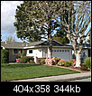 Big tree - too close to the house?-h.png