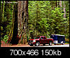 2 to 5 hours from your city - mini vaca's-tree_trailer_700-copy.jpg