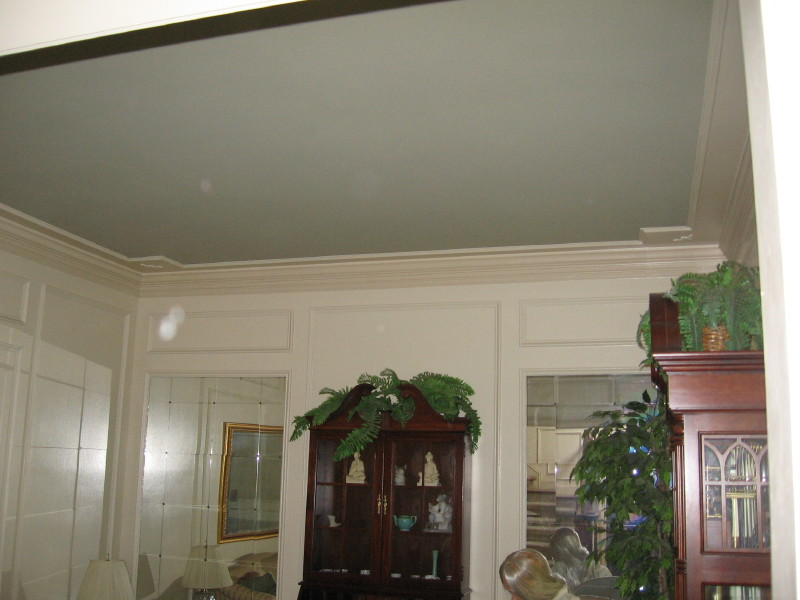 What Color To Paint Ceilings painting tray ceiling a different color? (panels, paint, wainscot