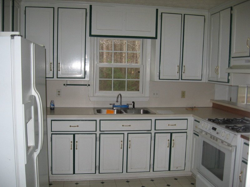 Painting kitchen cabinets not realted to other posted for Are painted kitchen cabinets in style