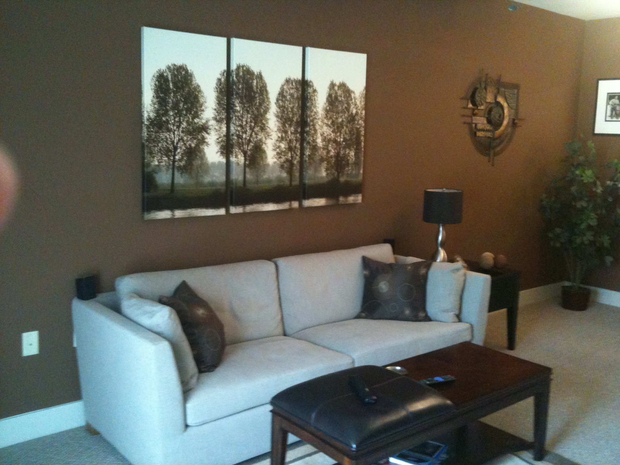 Good color schemes for small living rooms specs price for Top 5 living room paint colors