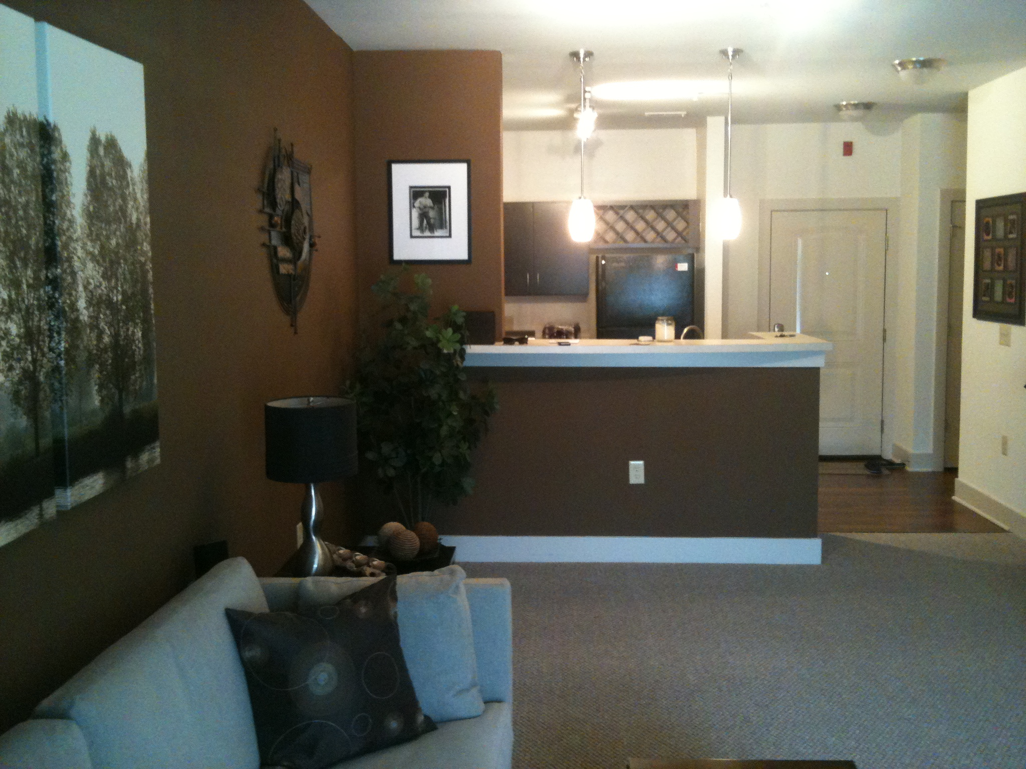 Superieur ... Bachelor Needs Advice On Living Room Paint Color Photo3 ...