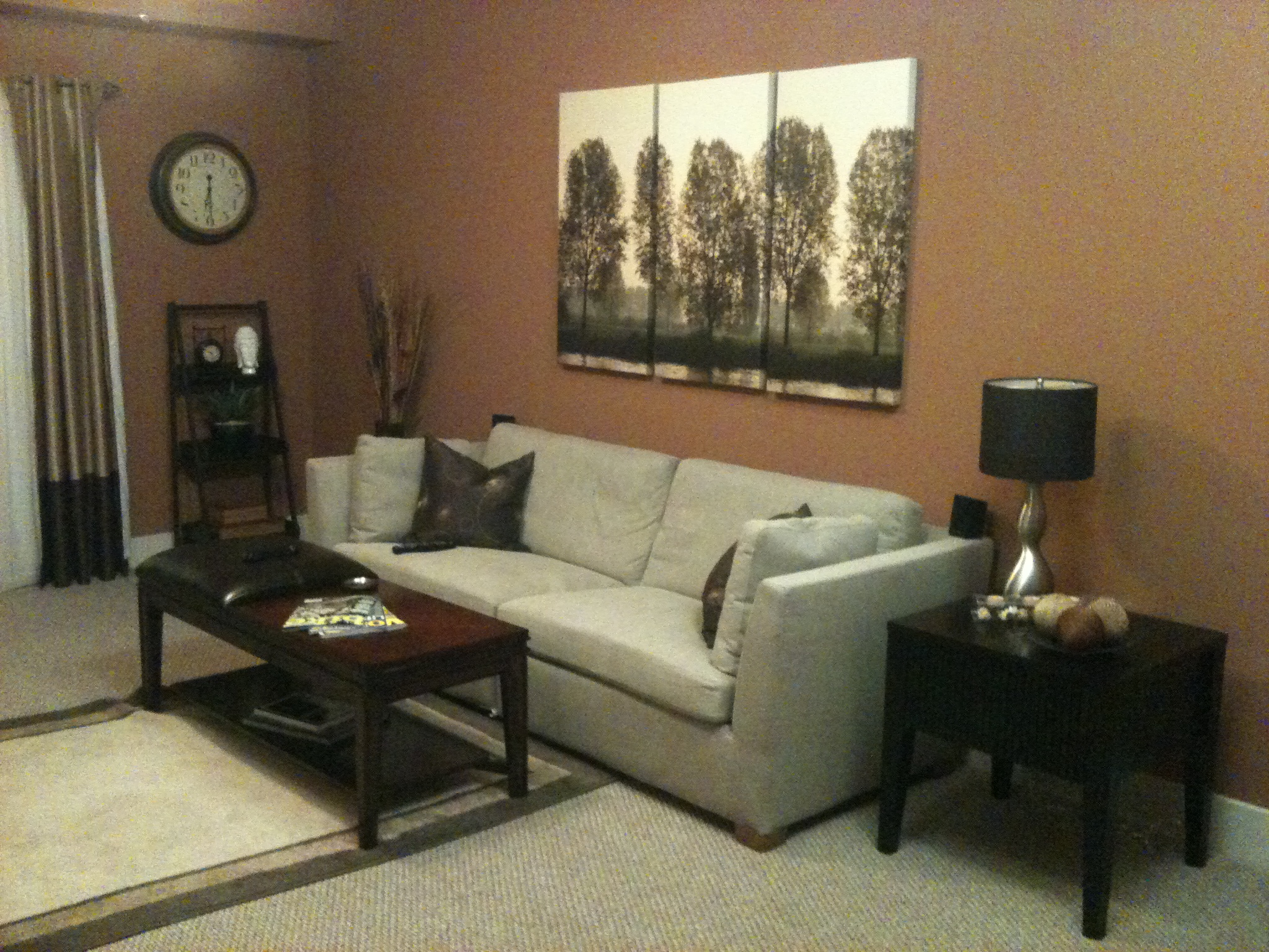 bachelor needs advice on living room paint color living1jpg