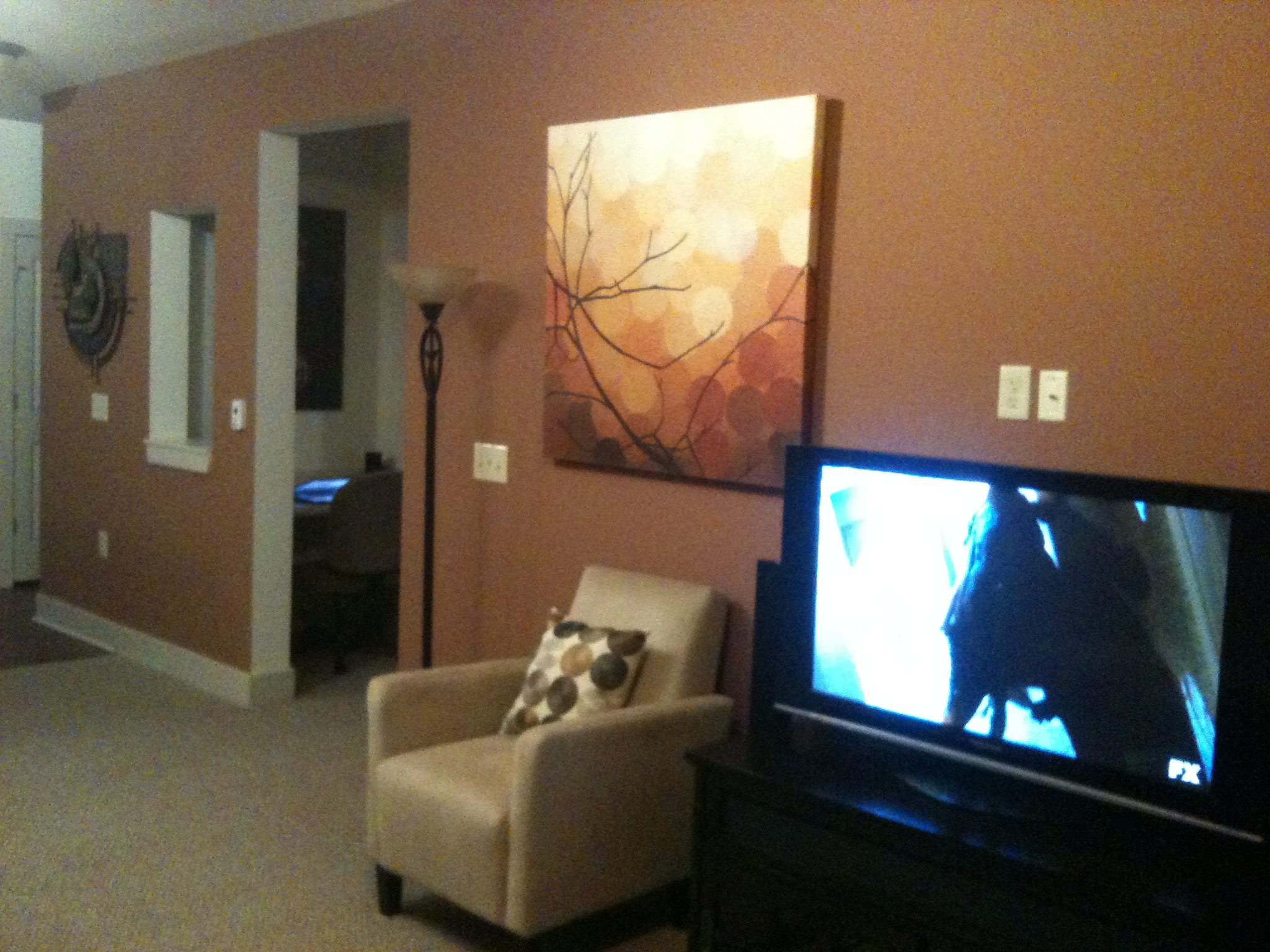 bachelor needs advice on living room paint color living6jpg