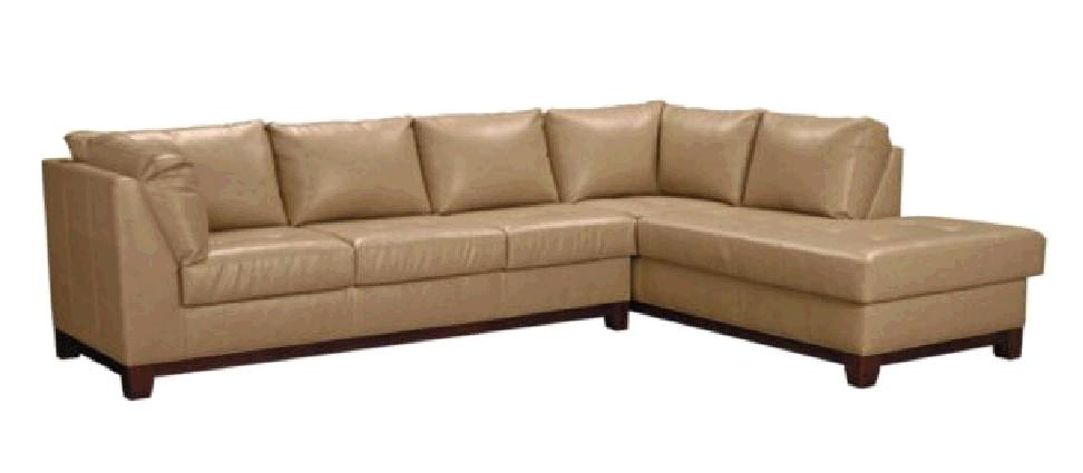 Tan Leather Couch With Pale Gray Wall??? Coucher