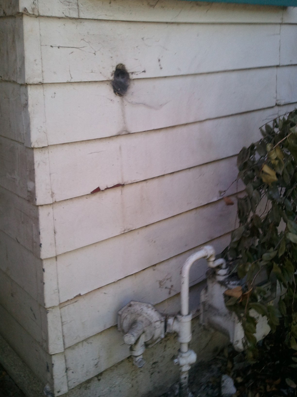 House Siding Repair Window Insulated Color Plank