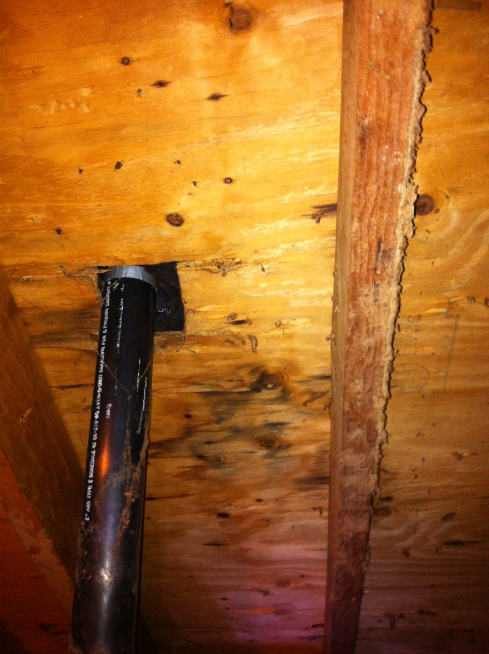 Water Leak From Roof water damage visible in attic, possible roof leak (roofing