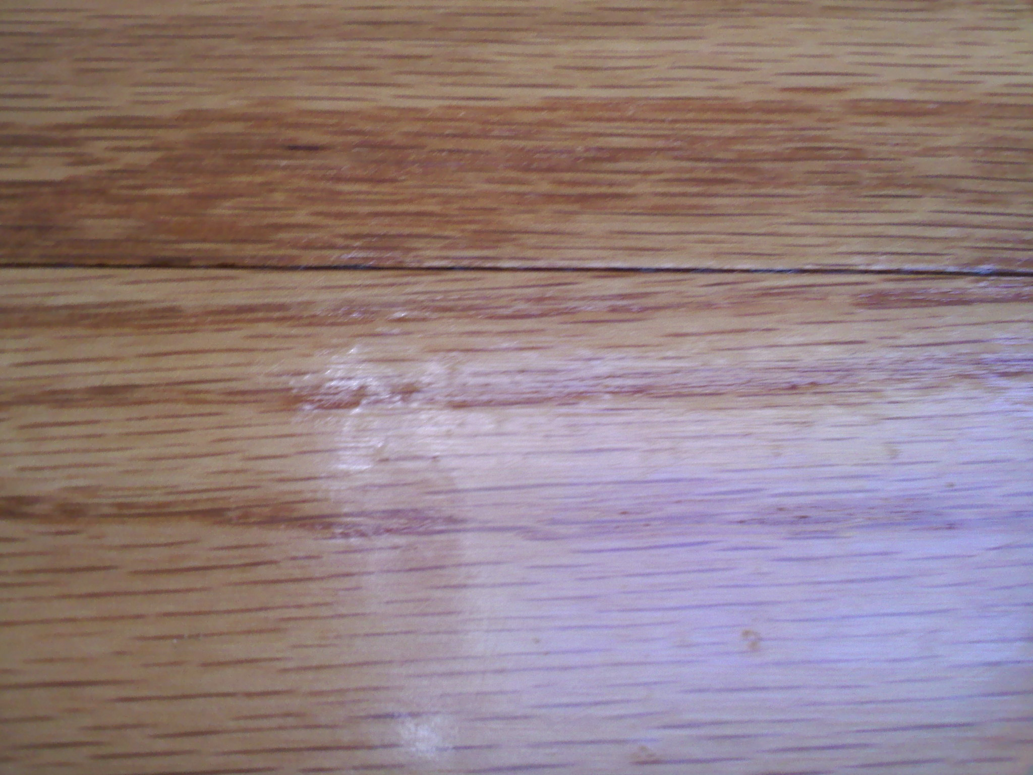 Cost Of Refinishing Wood Floors - Wavyfloors jpg refinished wood floors wavy gritty jpg