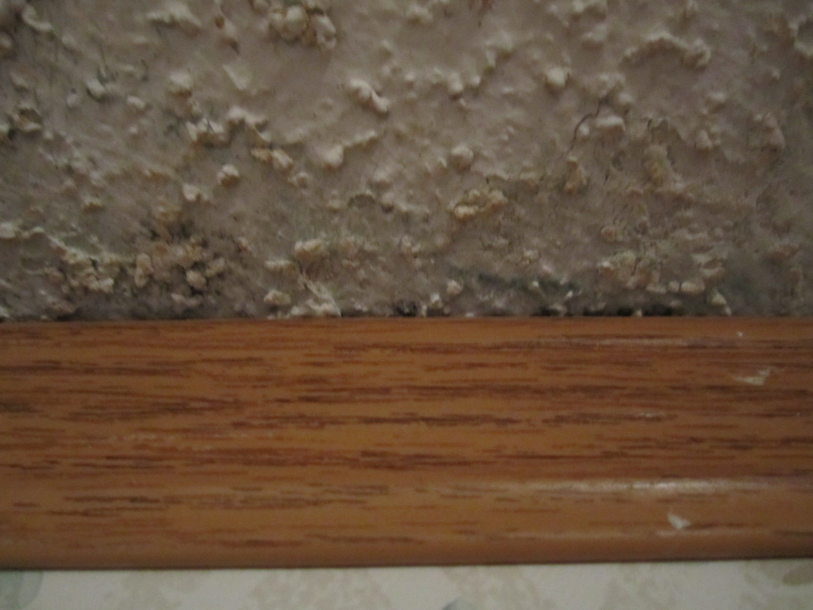 What Do Black Mold Look Like | Apps Directories
