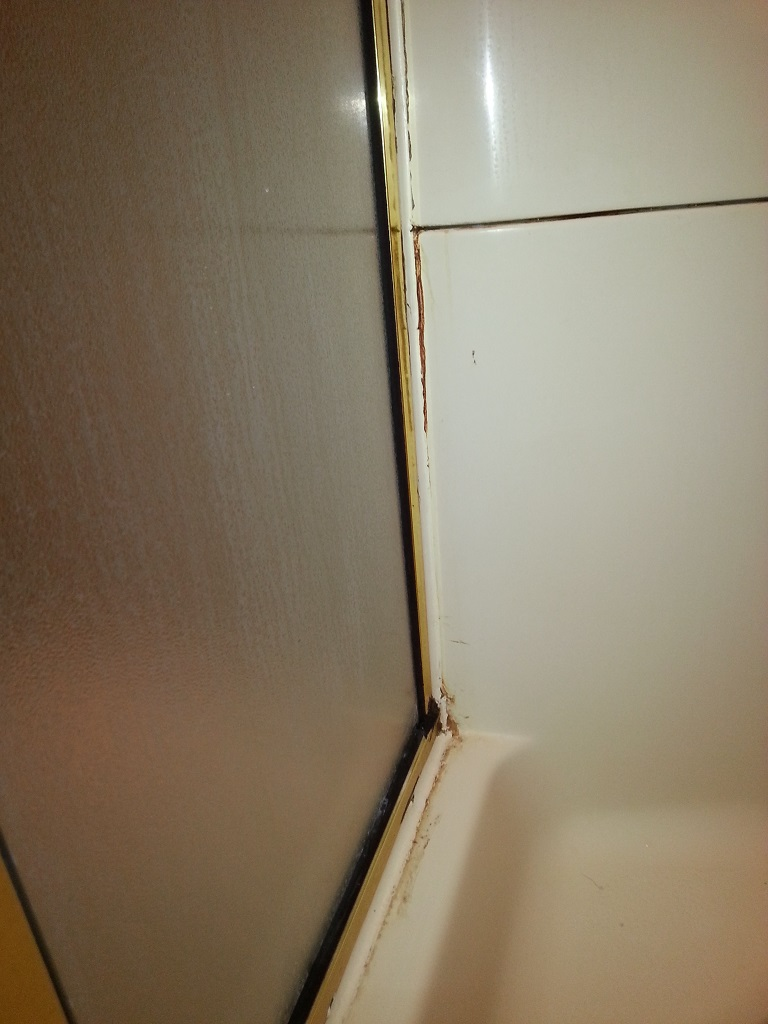 Shower Leaking And Other Questions Drain Installing Bathrooms Stains House Remodeling