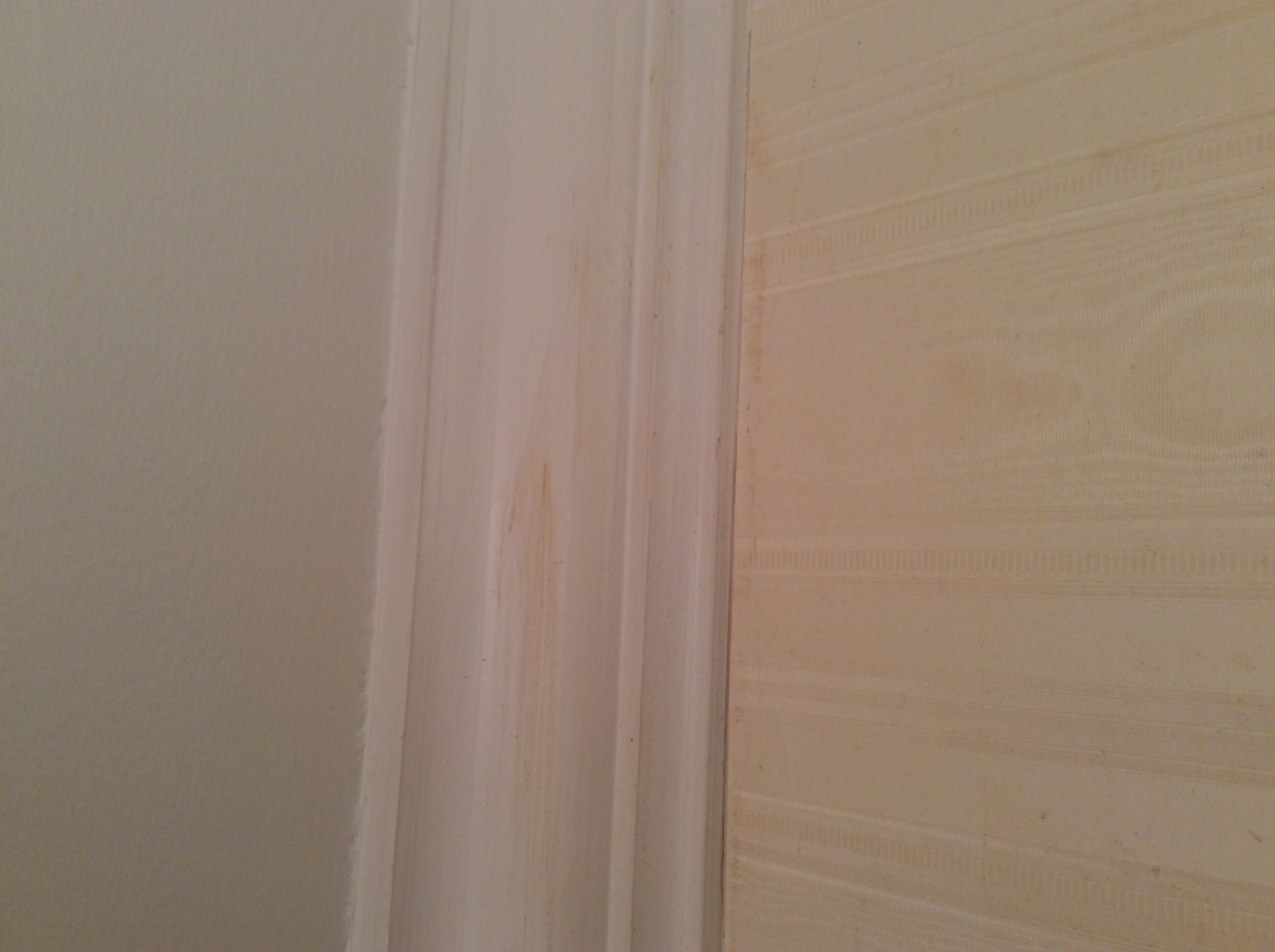 Yellow/brown spots coming through paint on trim (colors ...