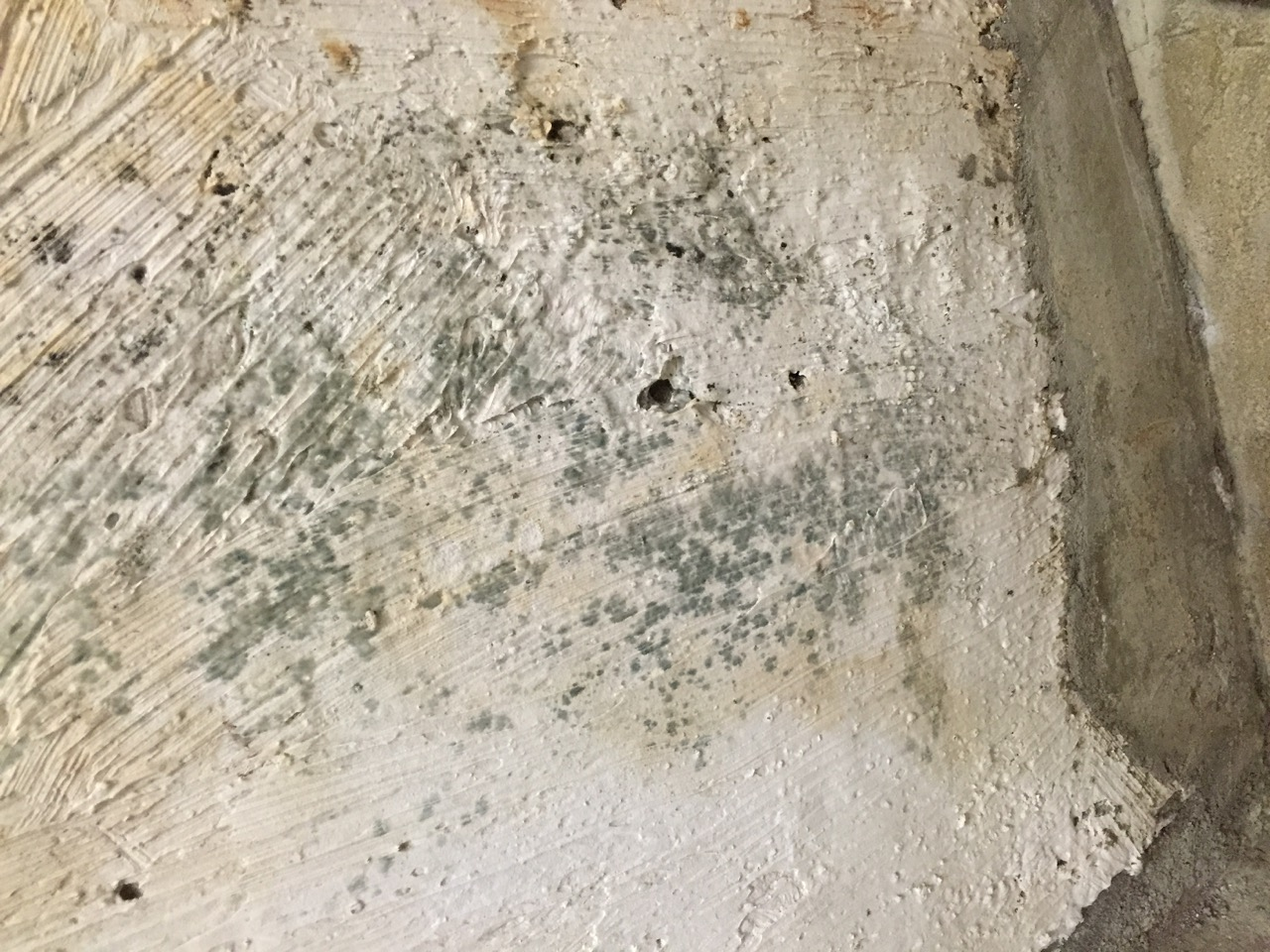 Removing mold from concrete foundation cleaning leaking for Bleach on concrete floor