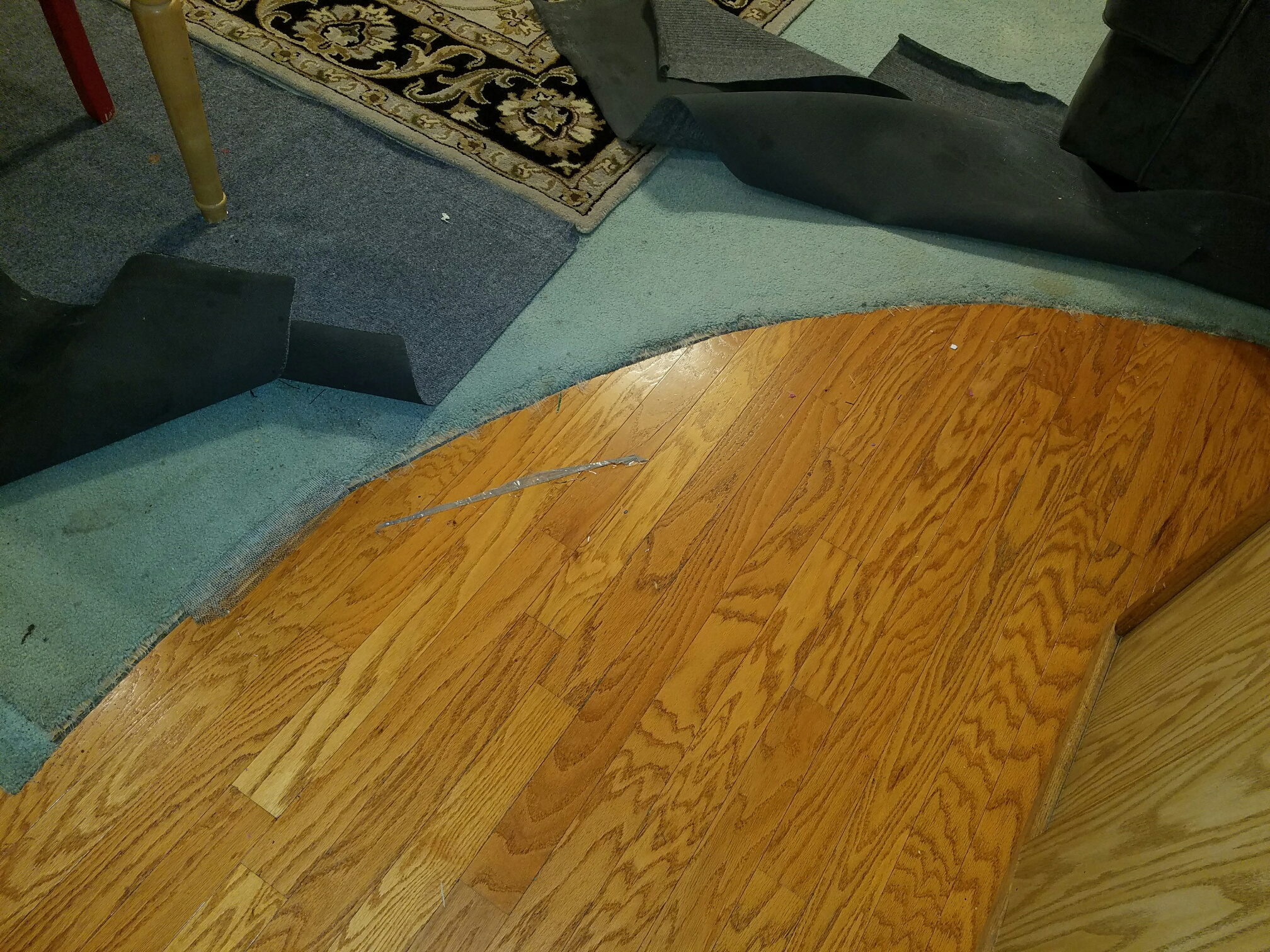 Seeking advice for lvp to hardwood floors color family for Lvp flooring