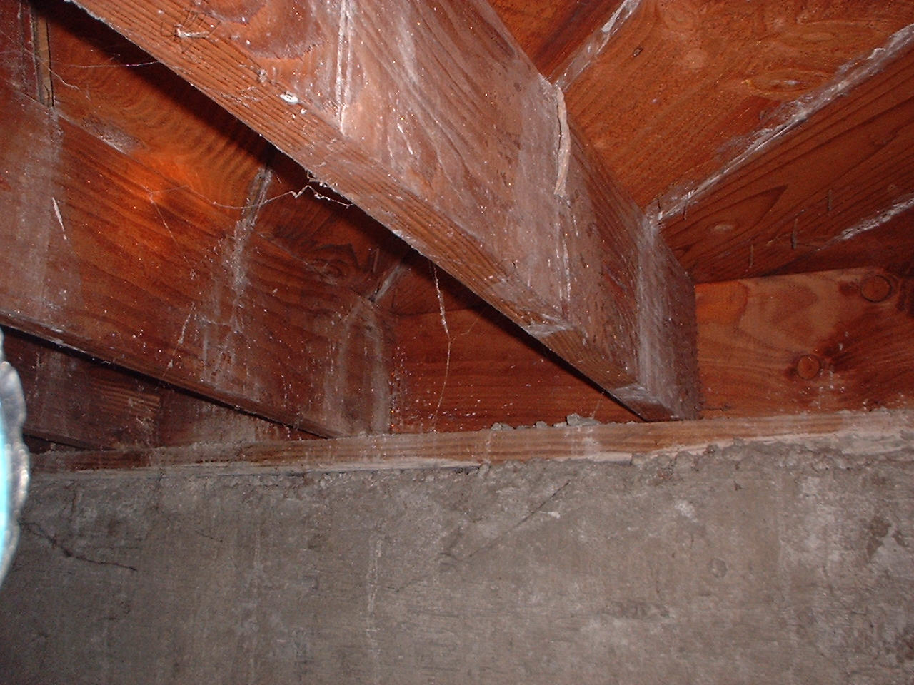 Mold, mineral deposits, or what??? (hardwood floors, smell ...