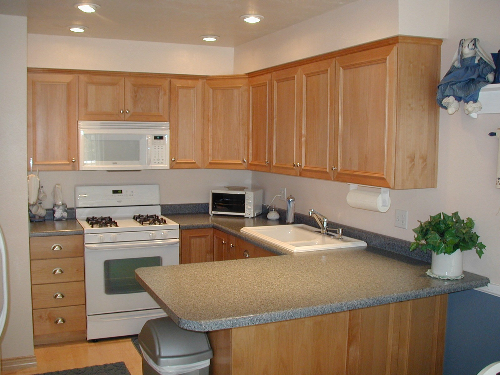Stainless Vs White Appliances Paint Installed Cabinet Faucets House Remodeling