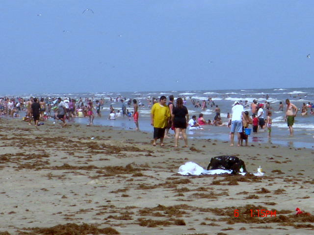 galveston tx beaches. Houston (how much, each,