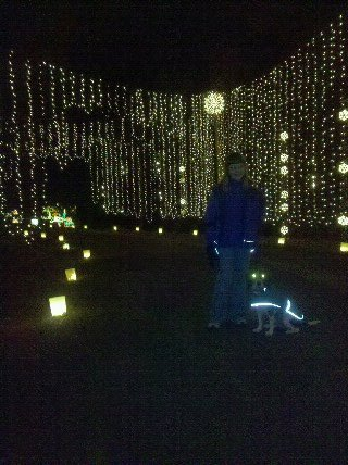 Huntsville Botanical Gardens Galaxy Of Christmas Lights Ider Live Money Huntsville Madison