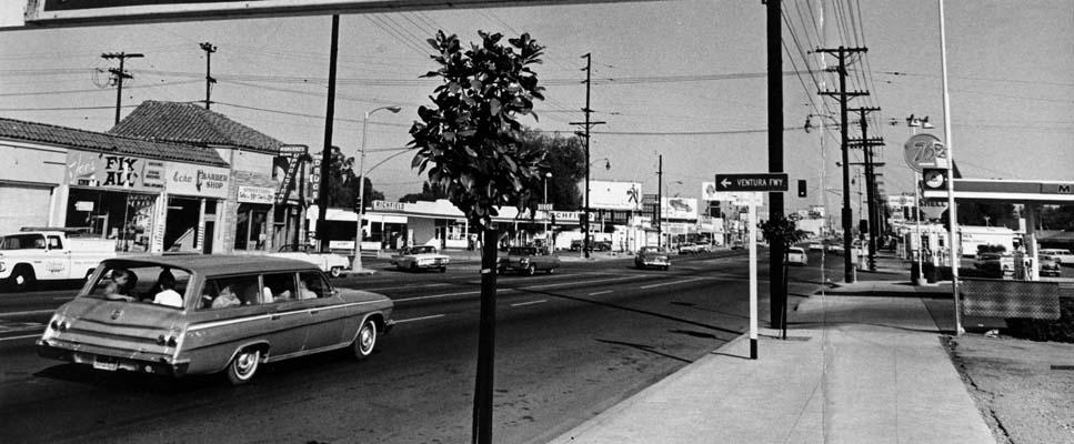 Vintage Park Boulevard 99