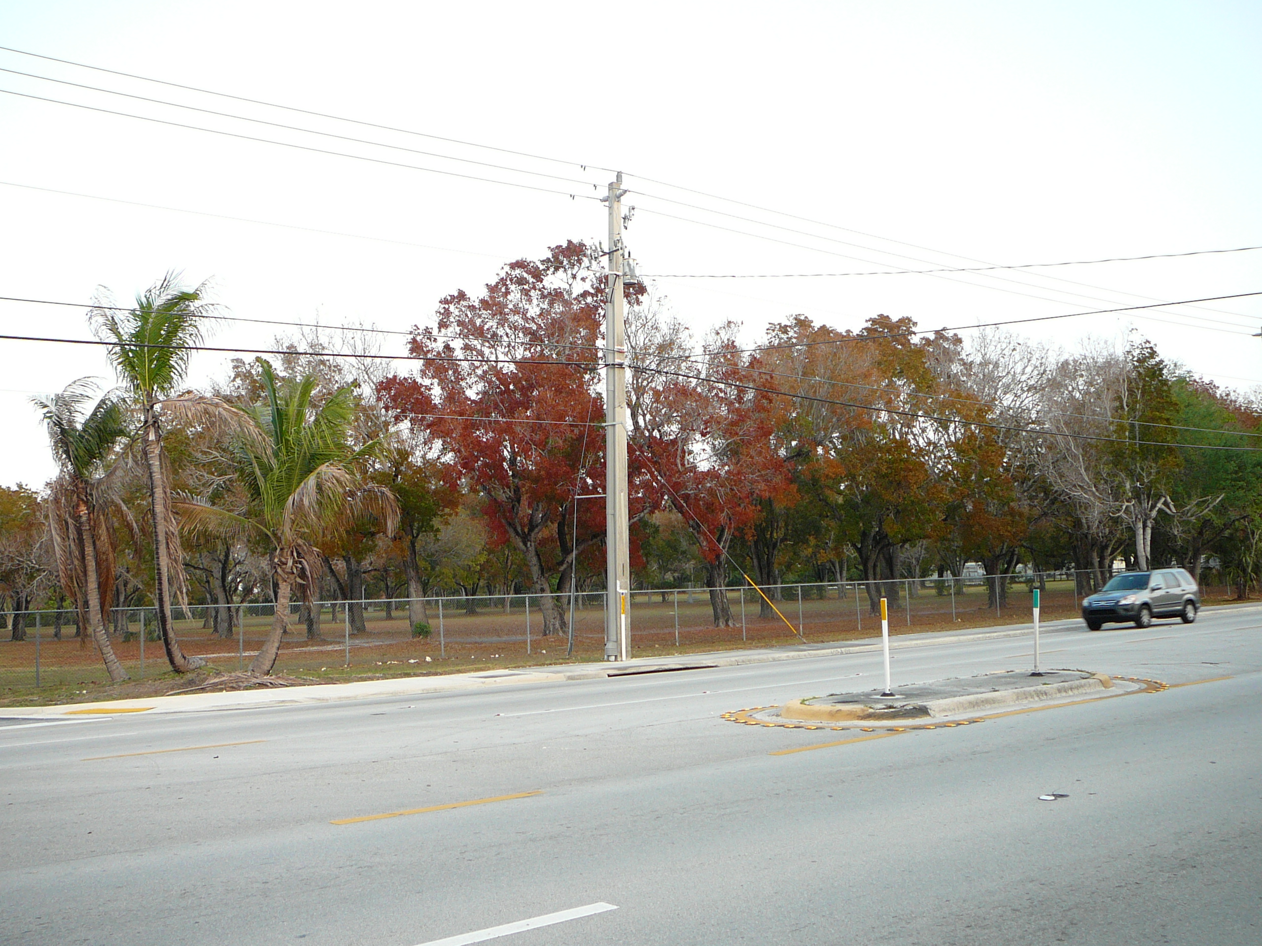 Living in SO Miami: Fall Weather   A Hint of Life   Miami Fall