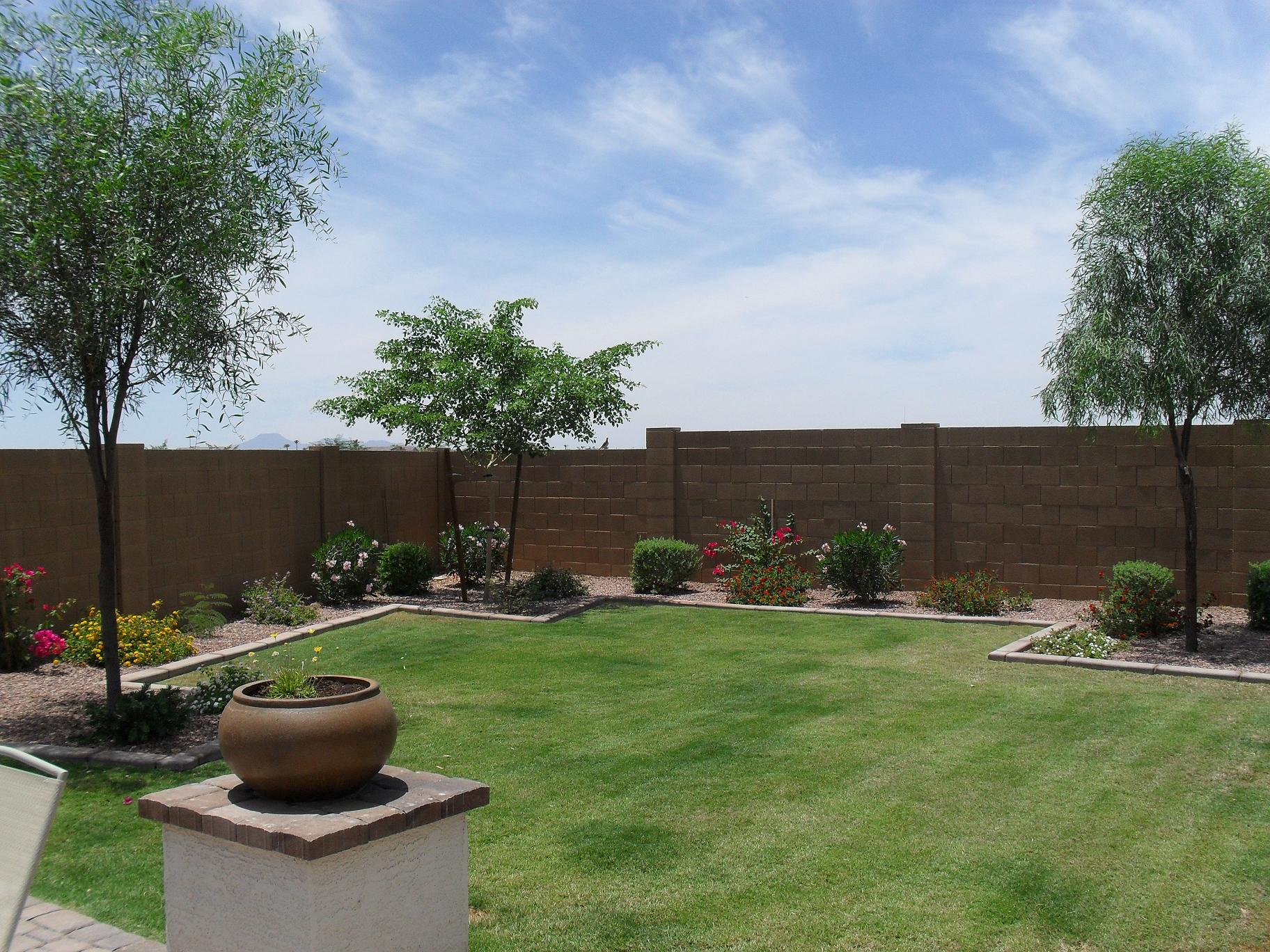 Stucco 39 ing backyard wall gilbert houses contractors for Yard designer