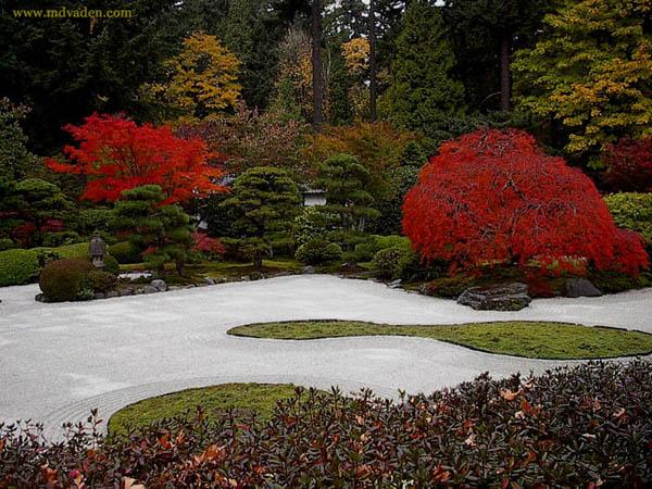 ландшафтные истории. Реферат на тему Японские сады.  История ландшафтного дизайна.