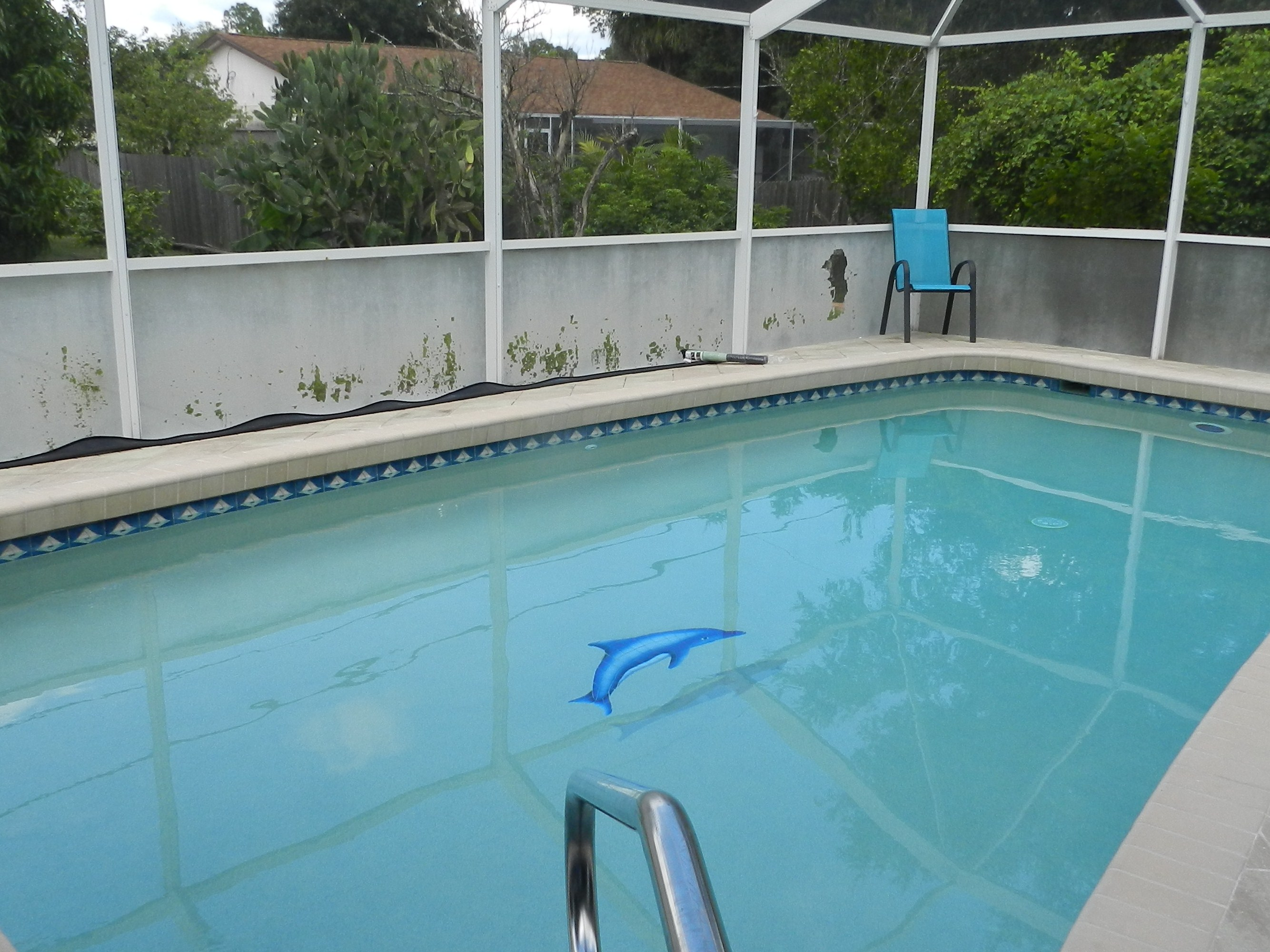 Pool cage rescreen companies estero homes cost for Pool design company