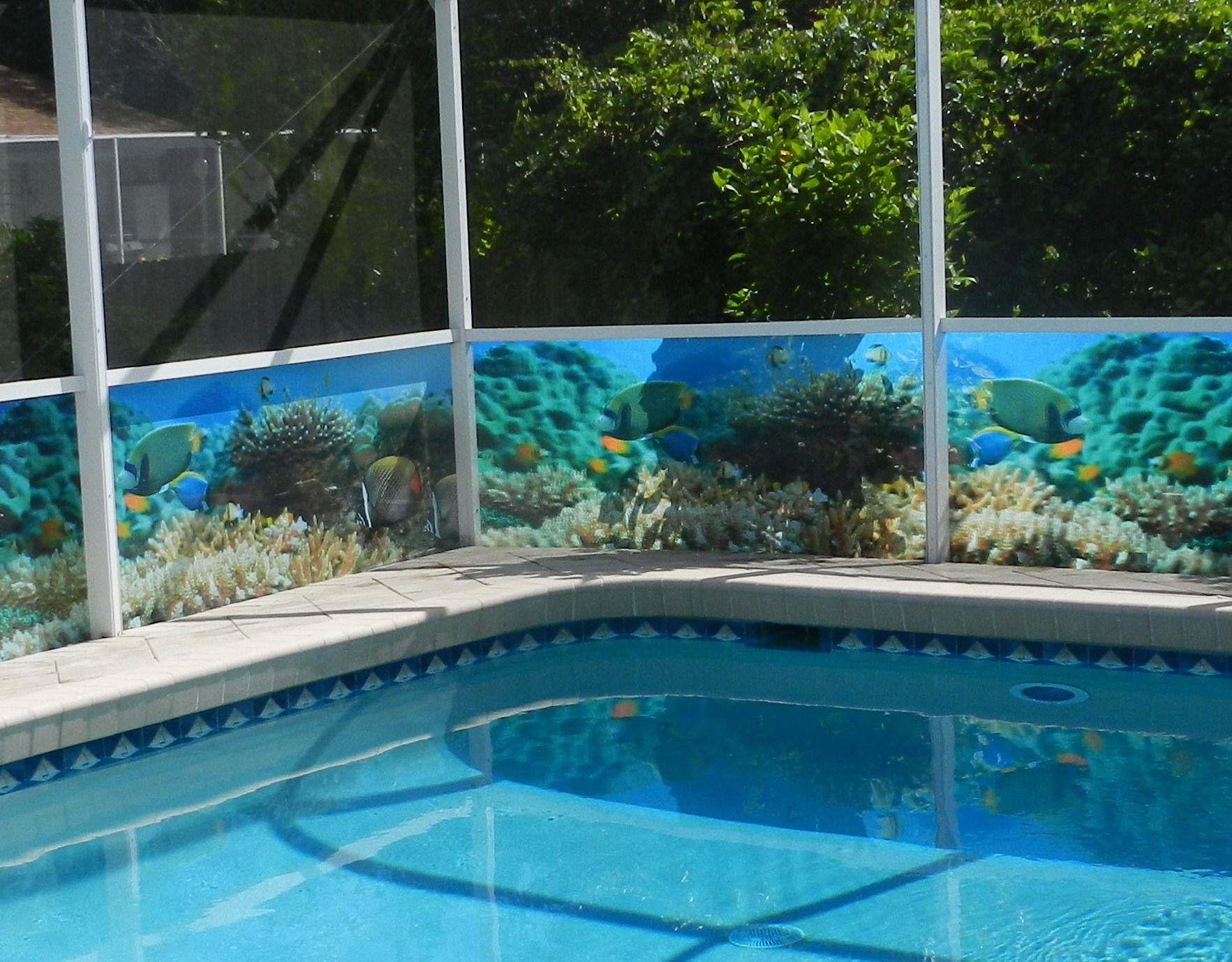 Pool cage rescreen companies estero homes cost for Pool screen privacy